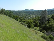 Sutter's Mill Expedition - Hillside behind Moorman property. View 1