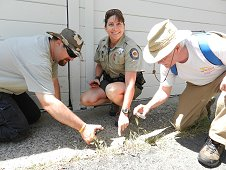 Sutter's Mill Expedition - Police officer, Suzi Matin, pointing to her 10.3 Hammer Stone find. SM14