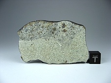 NWA 7030 Anomalous Sanidine-rich LL Metachondritic Breccia Meteorite
