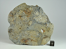 NWA 8744 Shock-Melted Feldspathic Diogenite Breccia